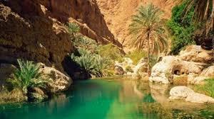 Oman oasi